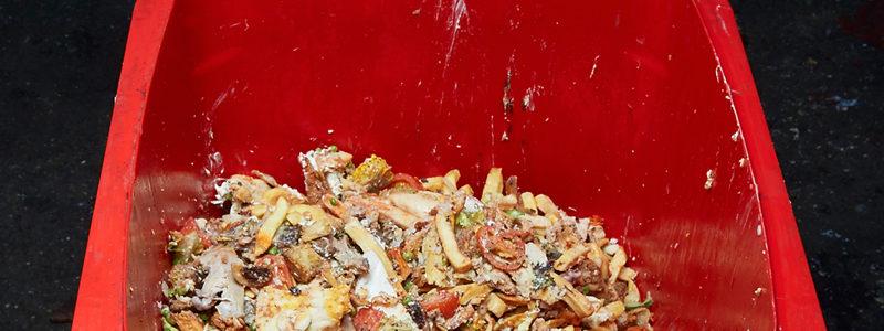 Europa debe prepararse para procesar residuos alimentarios